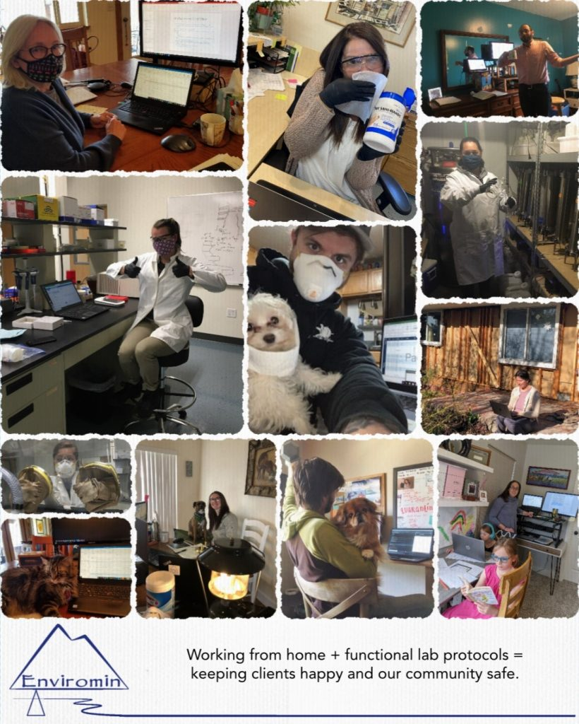 Enviromin staff working from home collage.